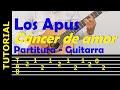 LOS APUS - Cáncer de amor - Huayno del norte. Tutorial: punteo, letra y acordes para guitarra