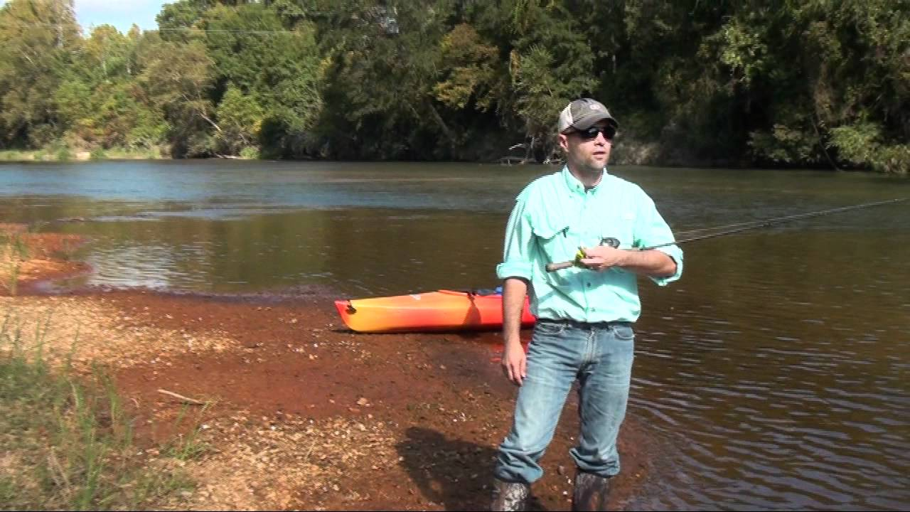 meet bogue chitto singles Bogue chitto state park offers an outdoor experience on one of the most scenic river systems in louisiana.