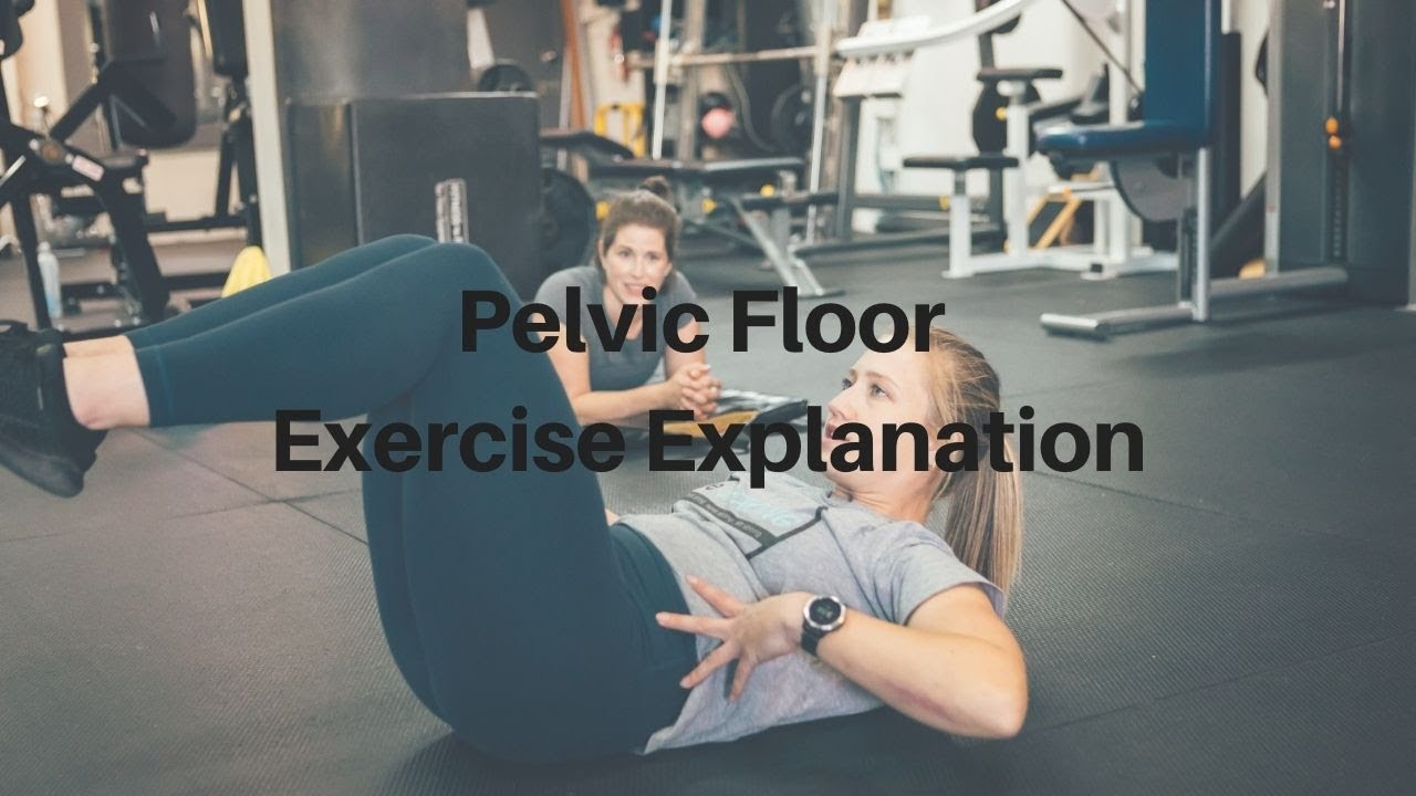 Pelvic Floor Muscles - Function and Training