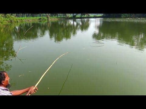 Best Fishing Video (Part-103)