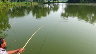 Best Fishing Video (Part-103)