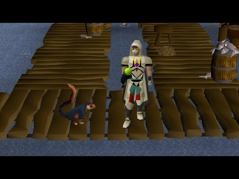 Old School Runescape- All Skilling Pets On Skiller Ep.8 FIRST PET!! (1/9)