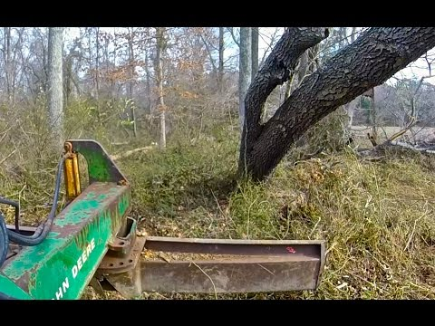 Clearing Fields of Trees w/ JD Tractor & Rear Blade