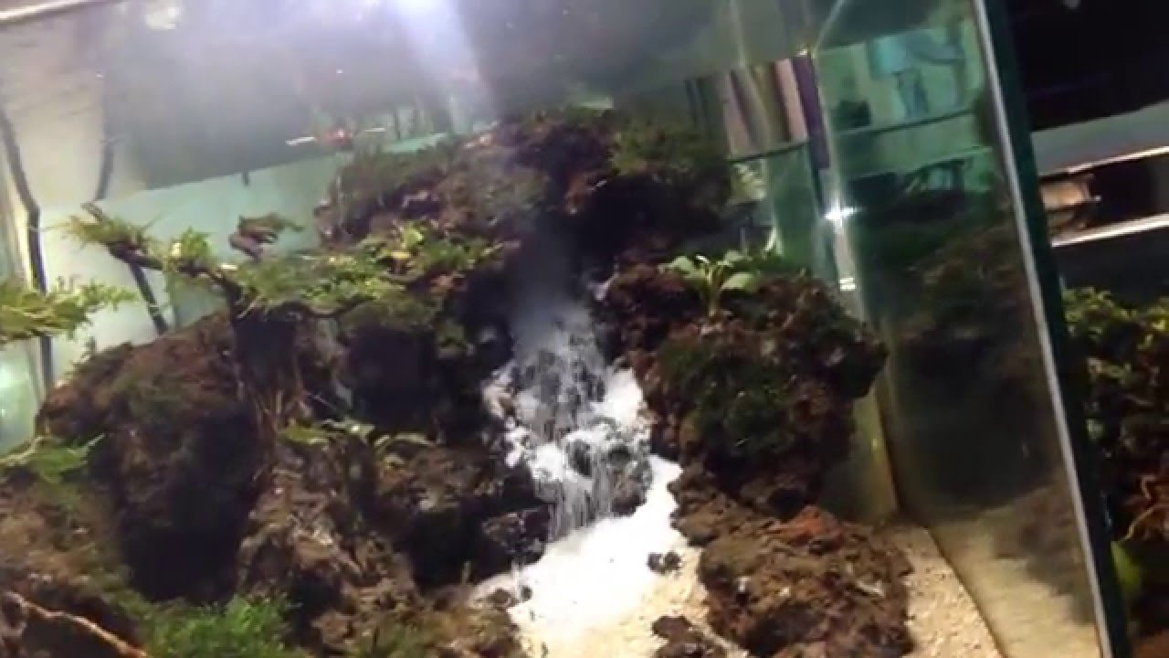 aquascape waterfall low cost - YouTube