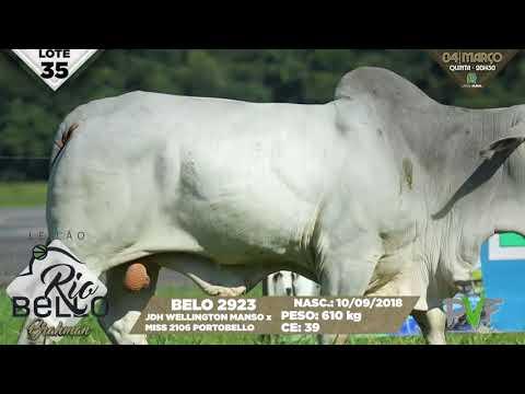 LOTE 35   BELO 2923