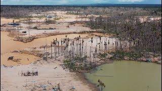 На страже природы: как военные в Перу борются с незаконной золотодобычей