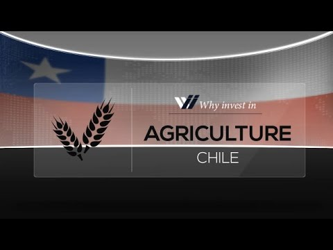 Agriculture  Chile - Why invest in 2015