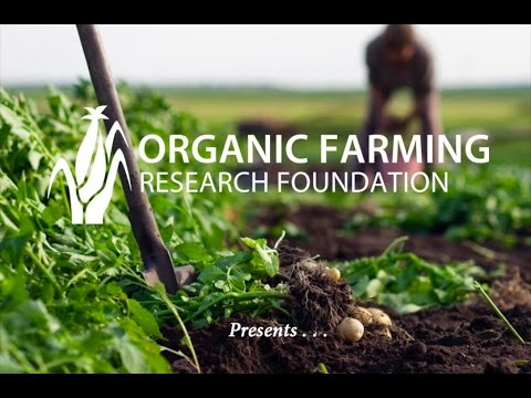 Organic Farming Case Study: Soil and Water