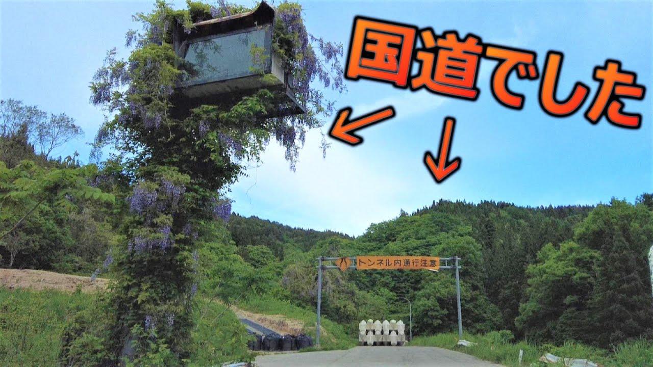 【人類滅亡後の世界】国道が廃れて自然に飲まれる姿が神秘的すぎる   【旧宇津トンネル】