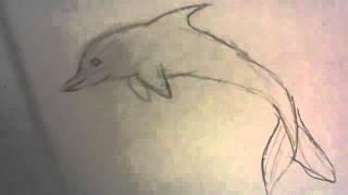 как правильно и красиво нарисовать дельфина с обьеснением(, 2015-11-07T15:30:38.000Z)