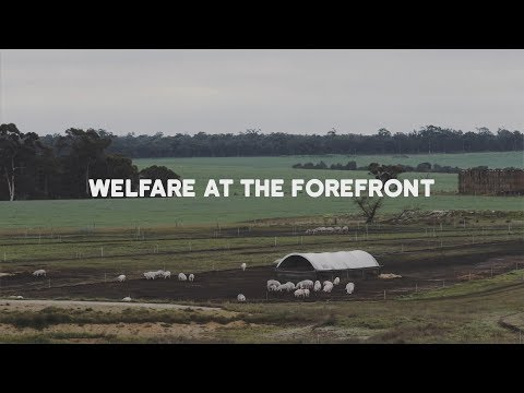 RSPCA Approved Good Food Series: Welfare at the forefront