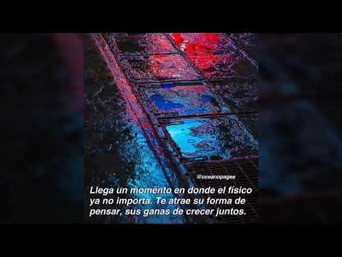 Frases De Amor Tumblr Para Dedicar 2 Youtube