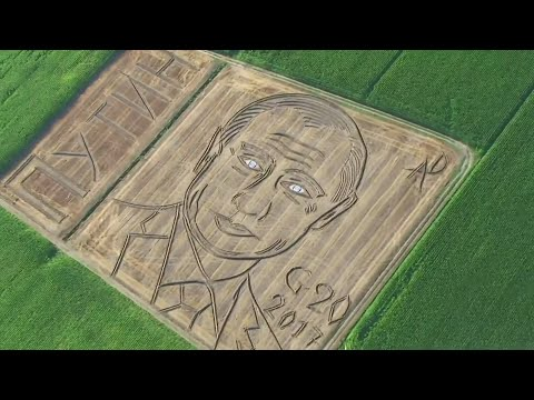 Face of Vladimir Putin has just appeared in a field