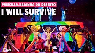 Priscilla, Rainha do Deserto - 'I Will Survive'