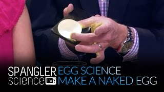 Egg Science - How to Make a Naked Egg