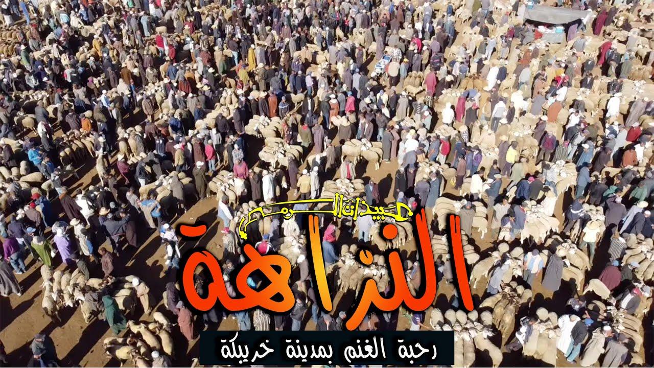 Nzaha - 6 | النزاهة 6 - رحبة الغنم بمدينة خريبگة