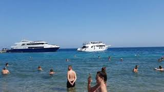 Palm Beach 4 Хургада Обзор отеля территории номеров и пляжа Октябрь 2021