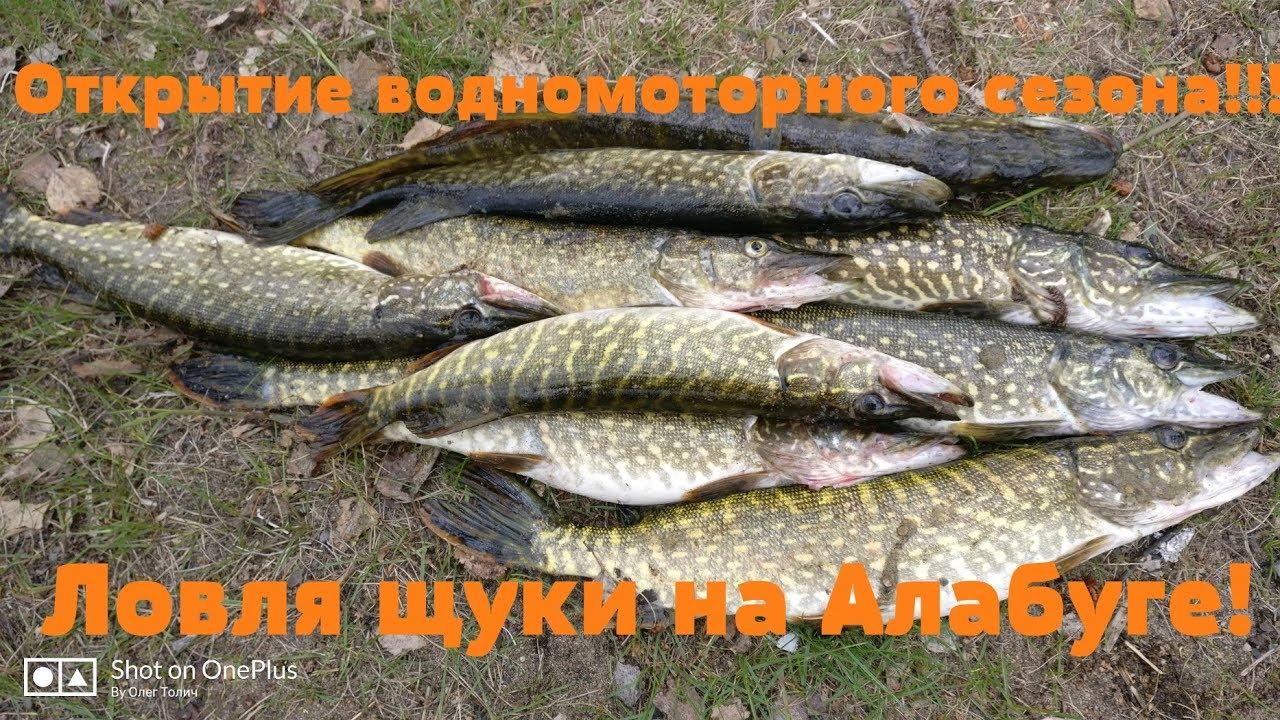 Алабуга челябинская область рыбалка 2016