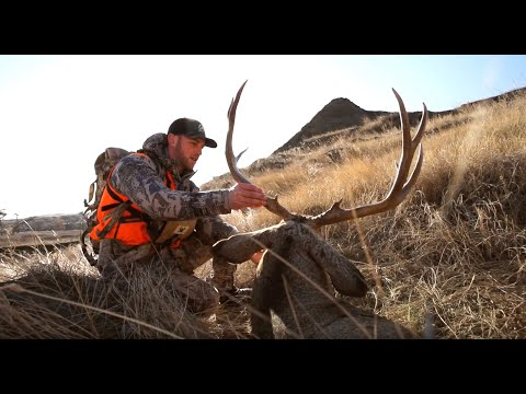 Crazy Wide Western Mule Deer Rifle Hunt