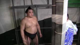 Harumafuji Warming Up Walkout Nagoya Japan Sumo Tournament Basho. G...
