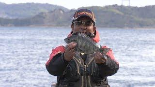 #327 磯の魚信が告げる瀬戸内の春~トーナメンターを魅了する黒鯛の躍動~ thumbnail