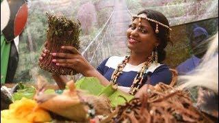 Why Meru farmers may no longer grow miraa plants