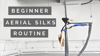 Aerial Silks Beginner Choreography to Winter Song