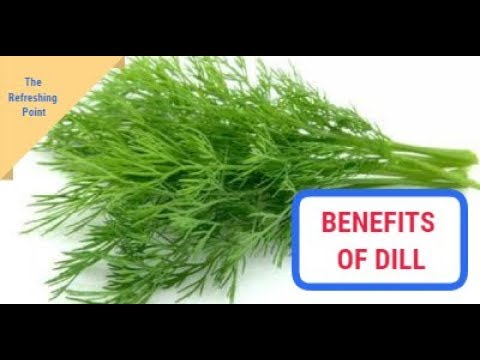 Dill the Medicinal Herb That Should be Eaten More Keeps Inflammation Away & Even Cleans Mouth