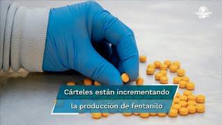 """La situación creada por el Covid-19 sirvió a los dos principales cárteles mexicanos, el de Sinaloa y el Jalisco Nueva Generación —los cuales están incrementando la producción de fentanilo, tanto en polvo como en píldoras—, para """"inflar artificialmente"""" el precio de las metanfetaminas: según reportes de la DEA"""