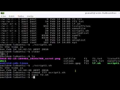 How To Execute A Shell Script In Ubuntu