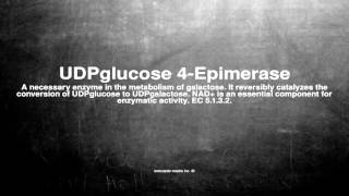 Medical vocabulary: What does UDPglucose 4-Epimerase mean