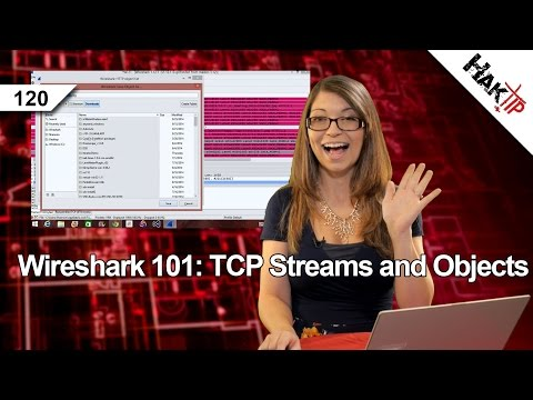 HakTip 120 – Wireshark 101: TCP Streams and Objects