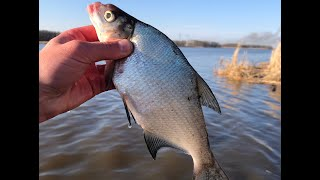 ОТКРЫВАЕМ СЕЗОН ЛЕТО 2021 РЫБАЛКА НА РЕКЕ рыбалка