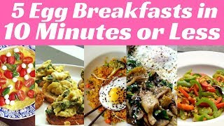 5 Egg Breakfasts in 10 Minutes or Less | 7 Day Fat Destroyer