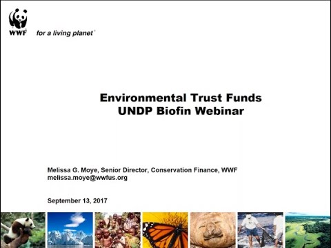 BIOFIN Webinar: Environmental Trust Funds