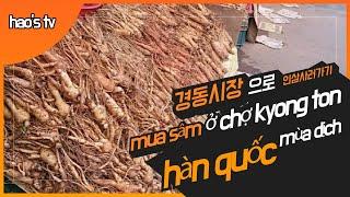 chợ sâm Hàn Quốc mùa dịch coro…