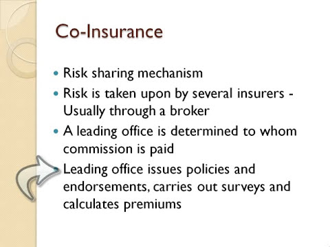 Coinsurance And Reinsurance4 Youtube