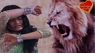 Meri Aashiqui Tum Se Hi 31st December 2015 EPISODE | Ishani gets ATTACKED by a Lion