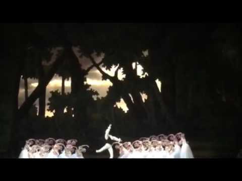 Chopiniana variation Wiener Staatsoper