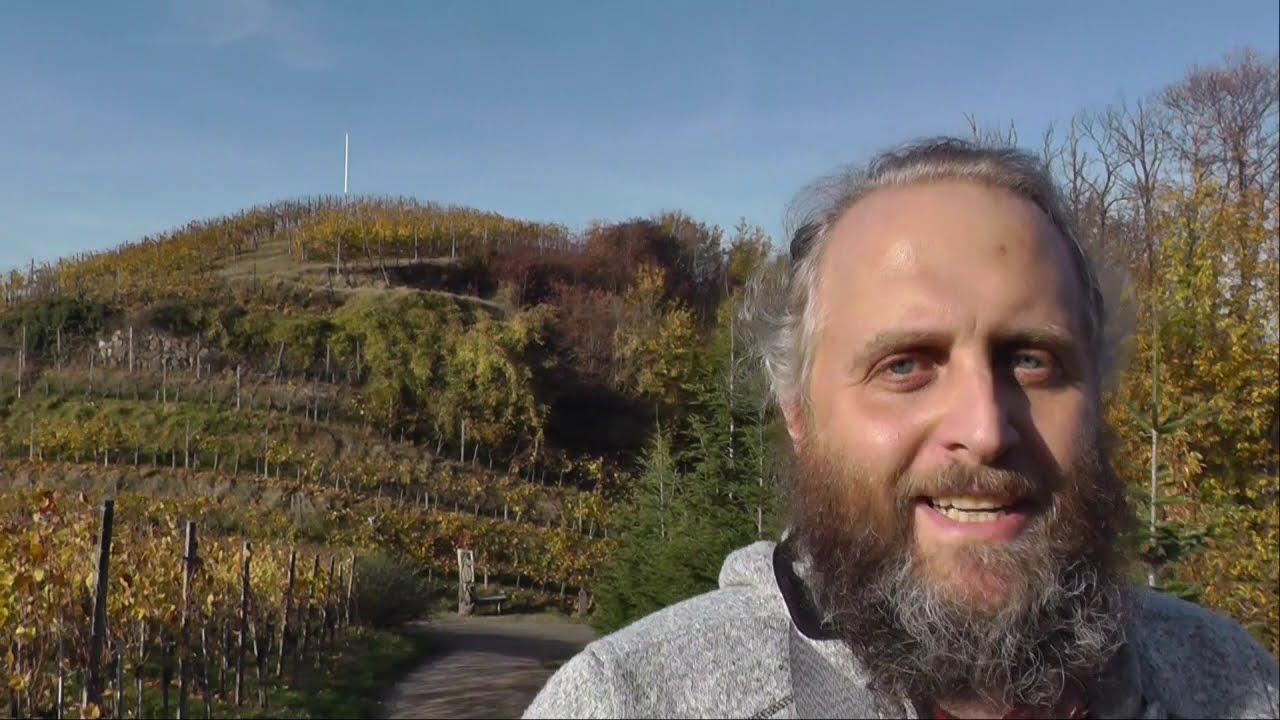 On Tour im Schwarzwald ( 28 ) -  Ortenauer Weinschleife Haslach-Tiergarten