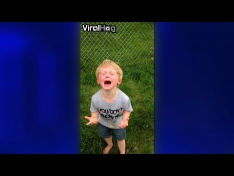 Boy Has Adorable Meltdown After Stepping in Dog Poo