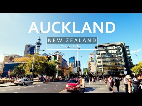 Auckland City Before The New Zealand Lockdown | Iphone 11 Pro 4K Video