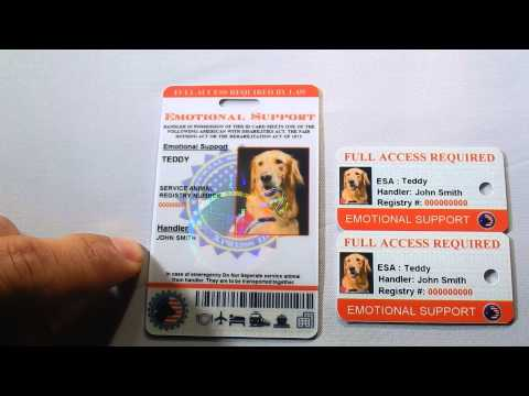Holographic Emotional Support Dog ID Review By: XpressID