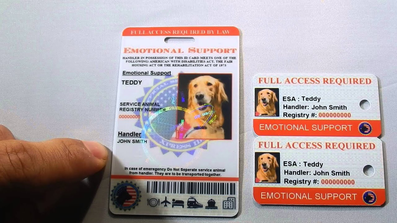 Holographic Emotional Support Dog Id Review By Xpressid