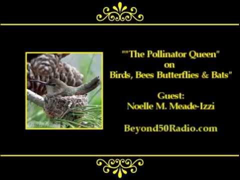 "The ""Pollinator Queen"" on Birds, Bees, Butterflies & Bats"