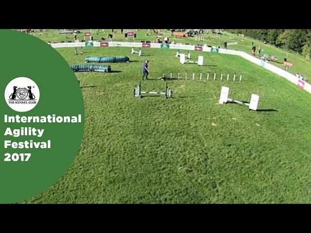 Small Grade 7 Jumping - Part 1 | International Agility Festival 2017