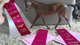 Placings From the Gold Country Model Horse Show