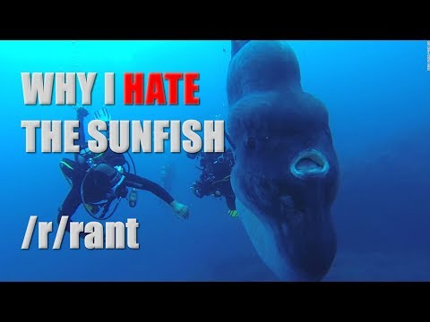 Why I hate the Sunfish - Dramatic Reading
