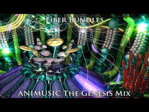 ANIMUSIC The Genesis Mix: Fiber Bundles