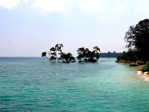 Trip to Andamans  | Andaman Islands | Andaman and Nicobar | Havelock | Jolly buoy | Port blair |